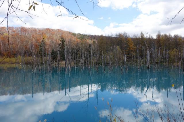 北海道旅行_美瑛の青い池2400px