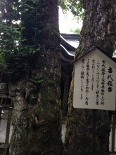 天岩戸神社6