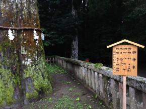 霧島神社4